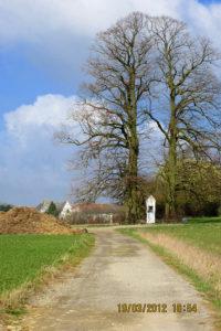 """Chemin rue Gritte à Braine-l'Alleud et Chapelle du """"Bon Dieu d'Giblou"""" à Braine-l'Alleud"""