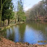 Étang aux 7 Fontaines à Braine-l'Alleud