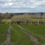 Vue vers le chemin du Fourçon qui sera englouti dans le tracé du Contournement Ouest à Braine-l'Alleud